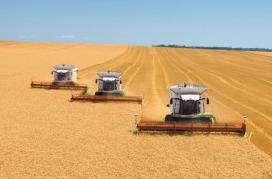 День работников сельского хозяйства и перерабатывающей промышленности - второе воскресенье октября